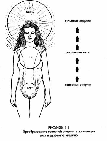 chakra-seksualnoy-sili